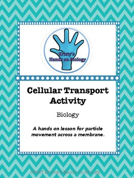 Cellular Transport Activity