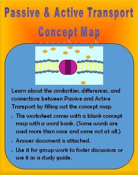 Cellular Transport Concept Map (Passive vs. Active)