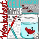 Cellular Transport Maze Worksheet for Review or Assessment