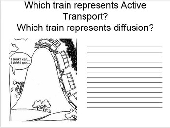 Cellular Transport Simple, Interactive Notes with student handout