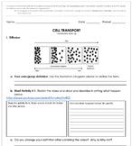 Cellular Transport - Vocabulary Build Up (4B)
