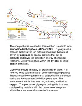 Cellular respiration Common Core Reading and Writing Activities