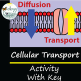 Cellular Transport Activity with Answer Key