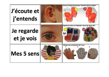 Centers to introduce the 5 senses