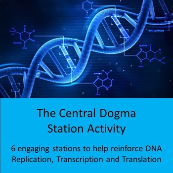 Central Dogma Station Activity