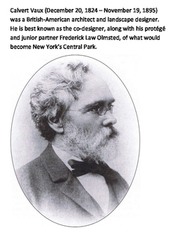 Central Park Word Search