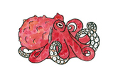 Cephalopod Clip Art Pack
