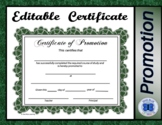 Certificate of Promotion - Editable