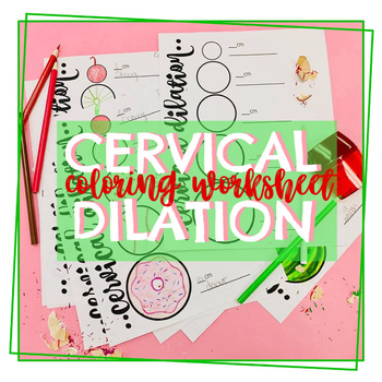 Cervical Dilation Worksheet by The Paisley Pineapple | TpT