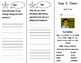 Cesar E. Chavez Trifold - Imagine It 2nd Grade Unit 6 Week 5