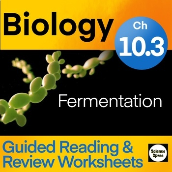 Ch 10.3 Cellular Respiration Guided Reading WS - Miller & Levine 2019 Biology