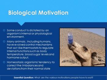 Ch 12.2 Biological and Social Motives - Motivation  and Emotion - Psychology