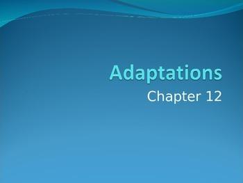 Ch. 12- Adaptations