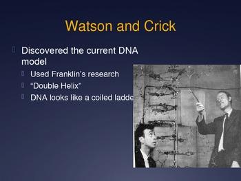 Ch. 12 DNA Slideshow