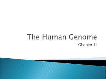 Ch. 14 The Human Genome Slideshow