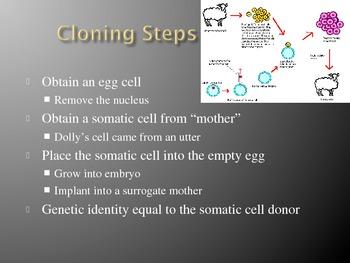 Ch. 15 Genetic Engineering Slideshow