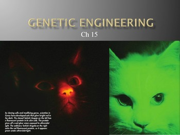 Ch. 15 Genetic Engineering Slideshow