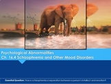Ch 16.4 Schizophrenia & Other Disorders - Psychological Ab