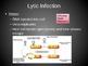 Ch. 20 Prokaryotes and Viruses Slideshow