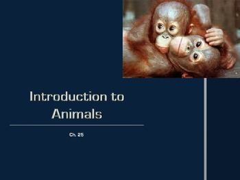 Ch. 25 Intro to Animals Slideshow