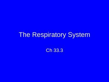 Ch. 33 Circulatory & Respiratory Systems Slideshow
