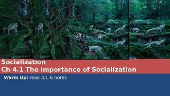 Ch 4.1 The Importance of Socialization - Sociology You McGraw Hill