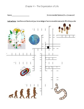 Ch.4 Holt Environmental Science Puzzle - Organization of Life