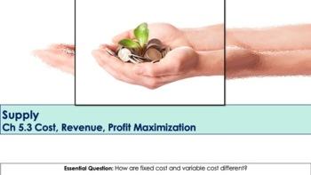 Ch 5.3 Cost, Revenue, Profit Maximization - Supply - Economics - McGraw Hill