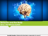 Ch 6.1 The Nervous System - Behavior and the Body - Psychology