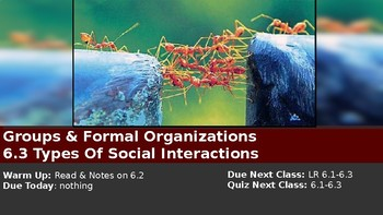 Ch 6.3 Types of Social Interactions Groups Formal Organizations You McGraw Hill