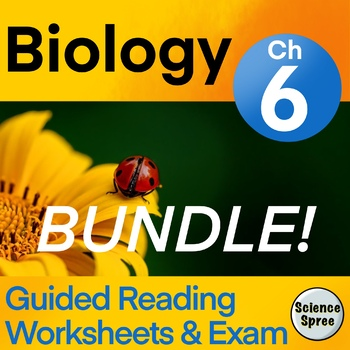 Miller And Levine Biology Worksheets Teaching Resources TpT
