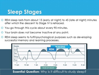 Ch 7 1 Sleep and Dreams Altered States of Consciousness Psychology McGraw  Hill