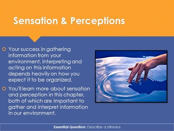 Ch 8.1 Sensation - Sensation and Perception McGraw Hill