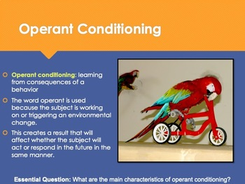 Ch 9.2 Operant Conditioning - Learning: Principals and Application - Psychology