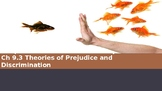 Ch 9.3 Theories of Prejudice & Discrimination  - Race & Ethnicity - Sociology