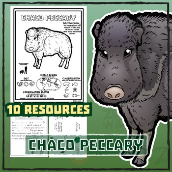 Chaco Peccary -- 10 Resources -- Coloring Pages, Reading &