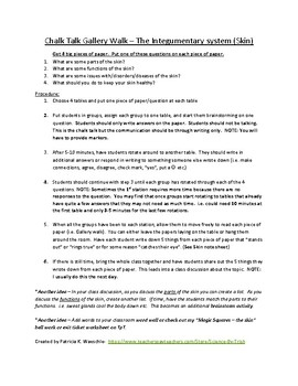 Chalk Talk Galley Walk - The Skin (Lesson plan)
