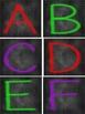 Chalkboard Alphabet Letters wordwall, bulletin boards, ABC, labeling, rigby