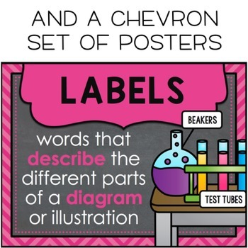 Chalkboard Nonfiction Text Features Posters