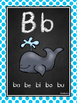 Chalkboard Spanish Alphabet & Syllable Charts