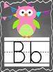 Chalkboard and Owls MEGA Decor Bundle