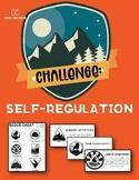 Challenge: Self-Regulation