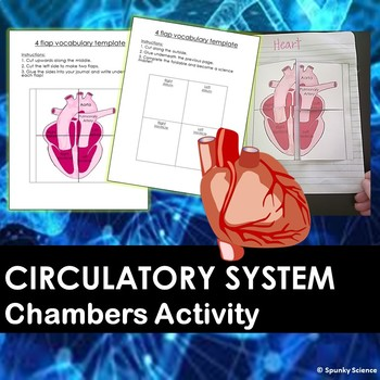 Chambers of the Heart Information Booklet