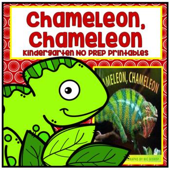 Folded Paper Lizard Chameleon Art Project Lesson