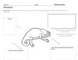 Chameleon Character Analysis Sheet
