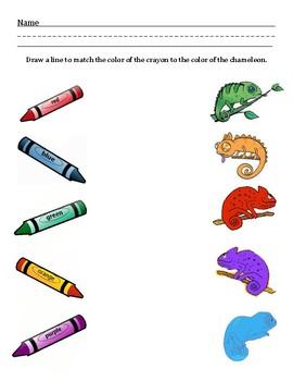 Chameleon Color Match