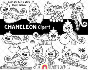 Chameleon Cuties