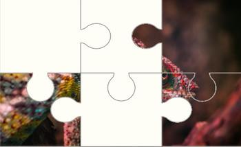 Chameleon Digital Puzzle VIPKID