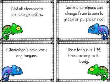 Chameleon Fact Cards