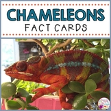 Chameleon Fact Cards